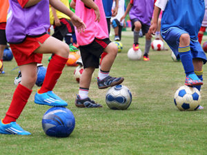 Reduce Administration For Your Holiday And Sports Camps